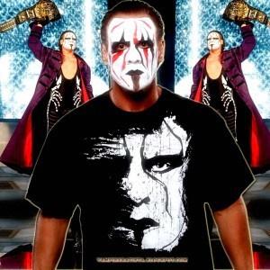 Actualización sobre Sting y la WWE 15
