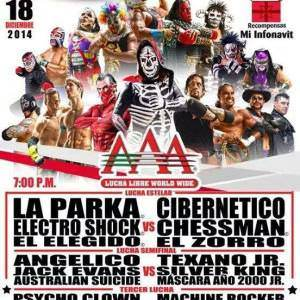 AAA: Cierre de actividades de 2014 en el Juan de la Barrera - 18/12/2014 3