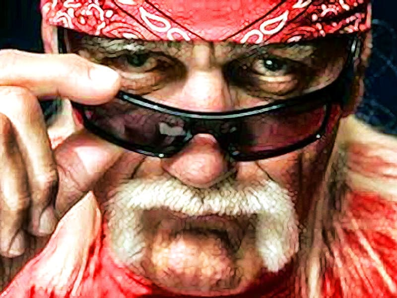 Hulk Hogan habla sobre la homosexualidad en la lucha libre 1