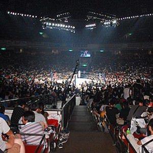 NJPW: La empresa anuncia los magnos eventos de 2015 15