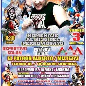 AAA: Homenaje al Hijo del Perro Aguayo en la función del 3 de abril en Xalapa 9