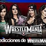 AJ y Paige vs The Bella Twins