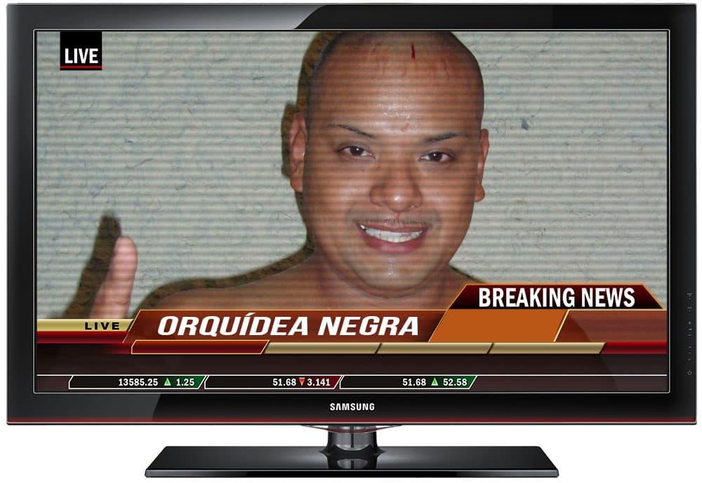 016 Orquidea Negra