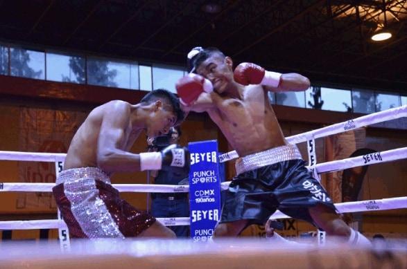 Cada boxeador tiene la oportunidad de trascender en el boxeo mexicano