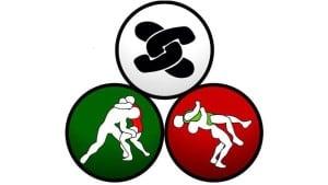 La Federación Mexicana de Luchas Asociadas deja de ser el órgano rector de la lucha en nuestro país 4