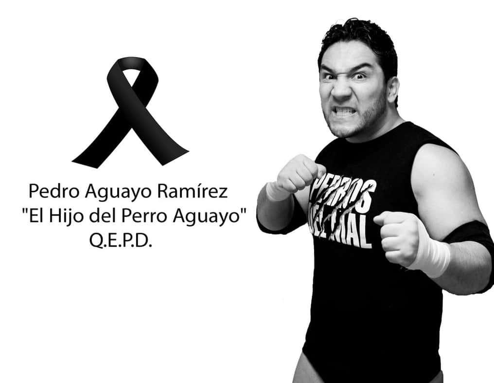 El Hijo del Perro Aguayo (1979 - 2015)