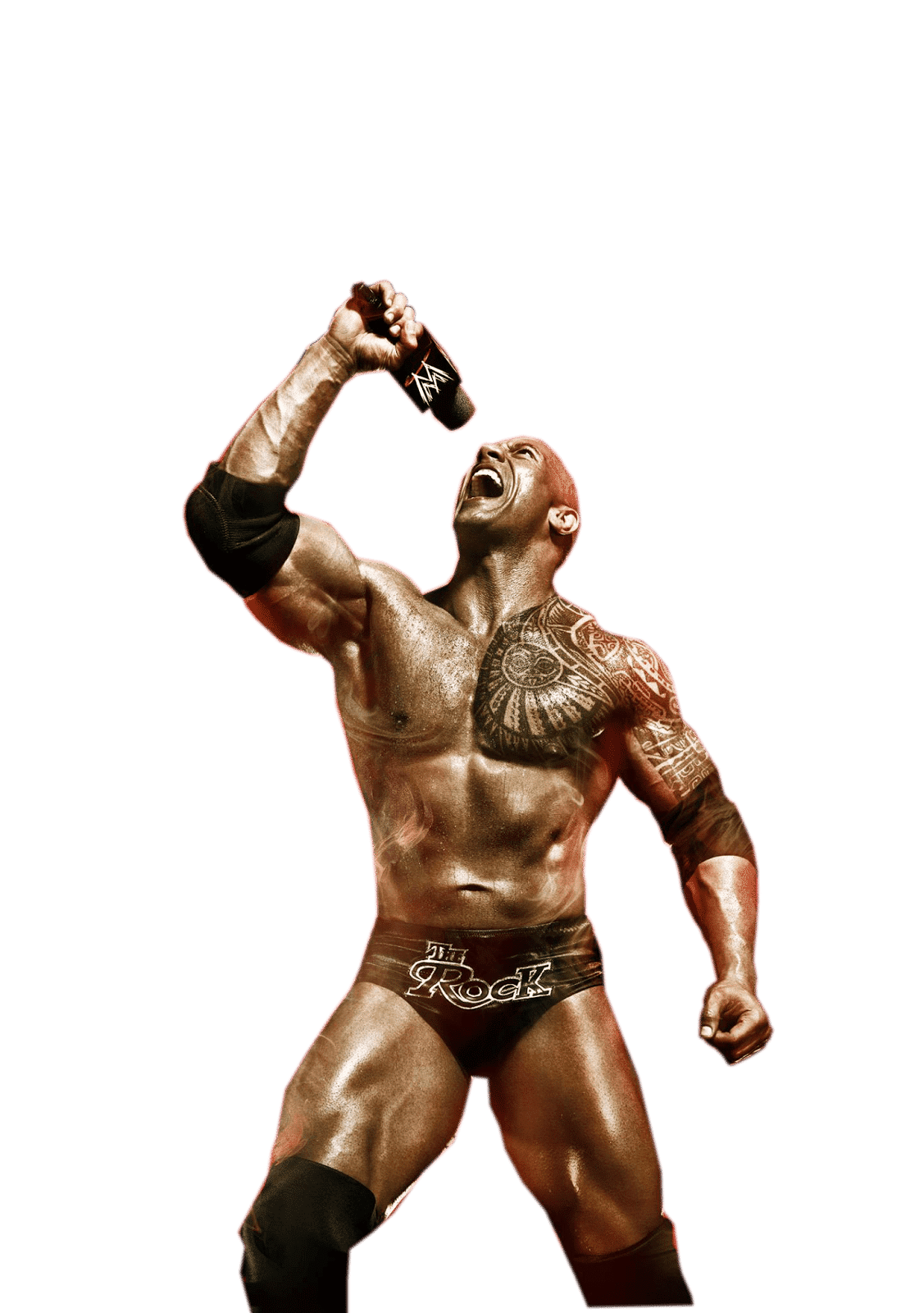 The Rock / WWE©