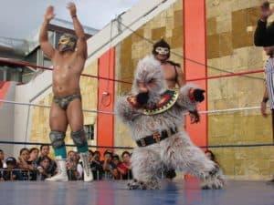 Galería de Fotos:  Rock y Luchas en el Metro San Lázaro 7