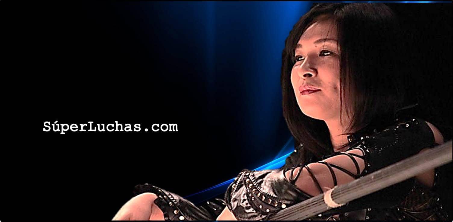 Manami Toyota anuncia su retiro de la lucha libre profesional 1