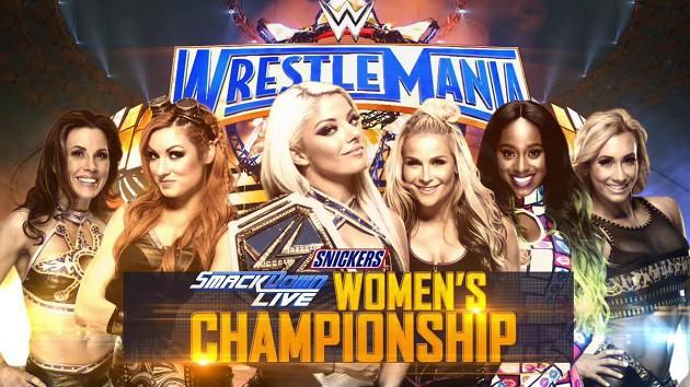 WWE WrestleMania 33 (Cobertura y resultados) - ¡Roman Reigns retira a The Undertaker! - ¡The Hardy Boyz regresan! - ¡Brock Lesnar y Randy Orton se coronan! 49