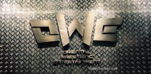 OWE Logo
