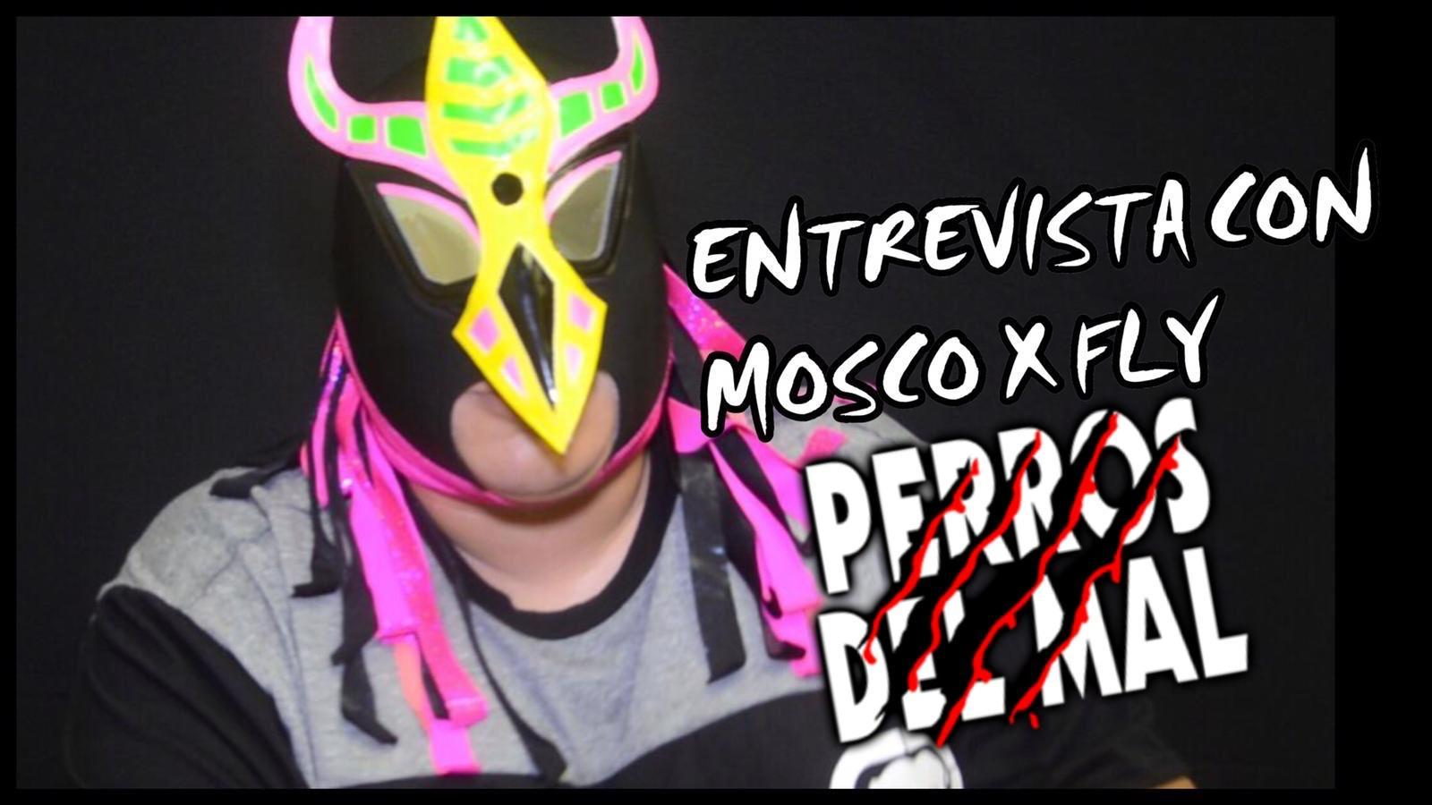 "Mosco X-Fly: ""Gracias al Perro Aguayo yo entré a la AAA"" 3"