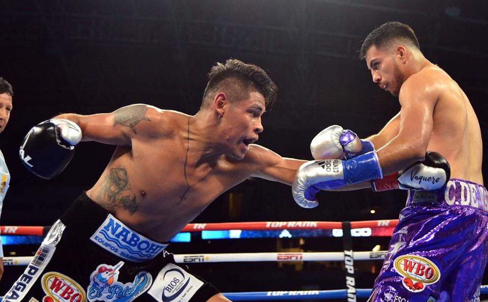 Vaquero Navarrete noqueó a De Vaca en 3 rounds 3