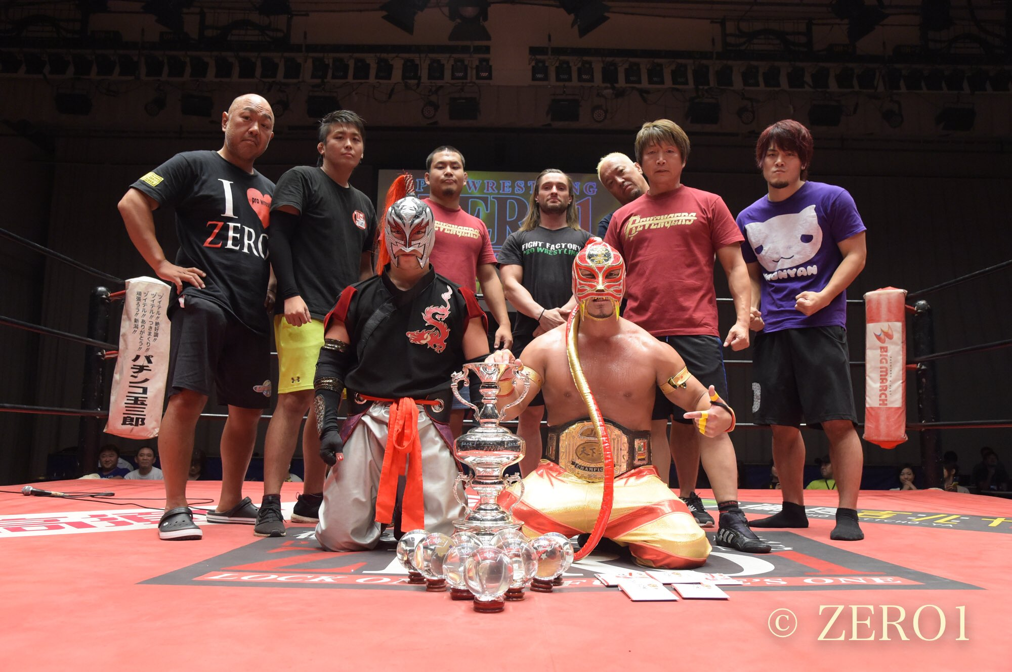 "Zero1: ""Tenka-Ichi Jr. Tournament"" HUB gana las esferas de dragón 12"