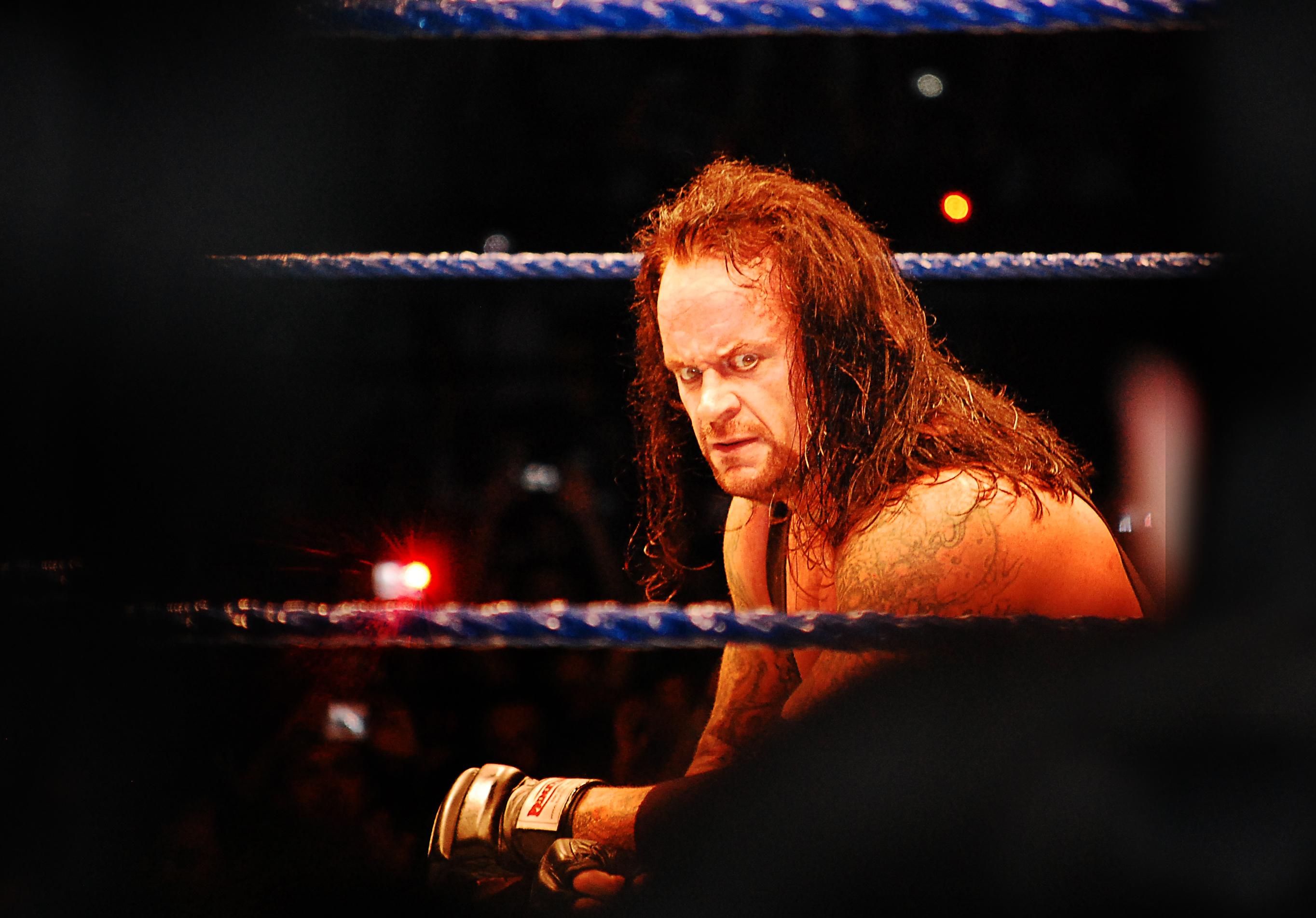 Matt Hardy tenía una idea con The Undertaker The Undertaker y los tigres