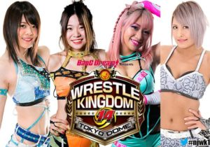 NJPW: Habrá lucha femenil en Wrestle Kingdom 14 5