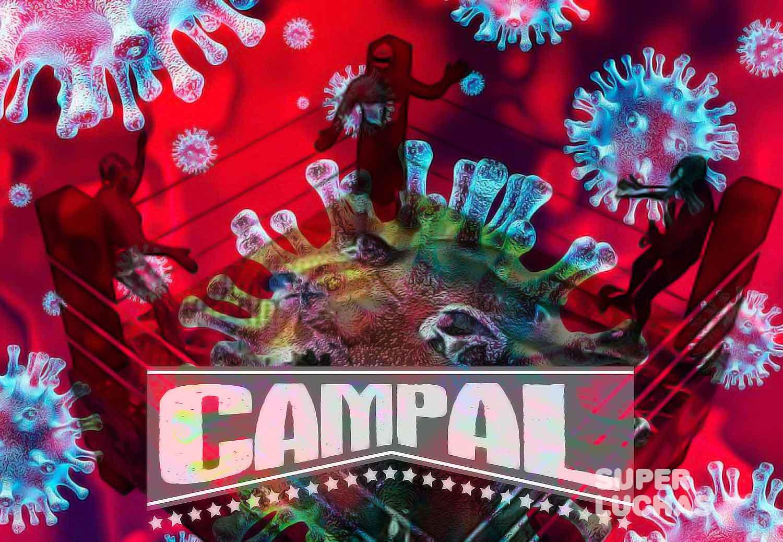 Campal coronavirus