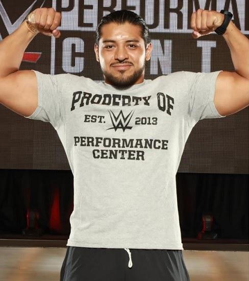 Hijo del Fantasma en WWE Hijo del Fantasma se salva de secuestro en NXT
