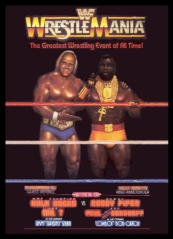 WWE Wrestlemania - Madison Square Garden 1985