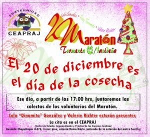19 de diciembre de 2012: Maratón Tormenta Navideña II