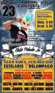 Homenaje a Chile Peludo, Jr. (q. e. p. d.) (Arena Coliseo de Reynosa, Tamaulipas - 23 de junio de 2013)
